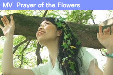Prayer of the Flowers